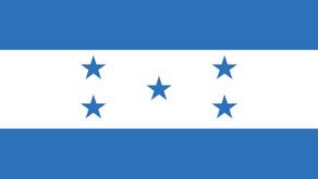 Asylum: Maldonado-Castro; Mejia-Almendarez v. Ashcroft, 103 Fed. Appx. 113 (9th Cir. 2004)