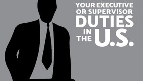 Your Executive or Supervisory Duties in the US