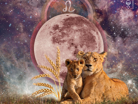 Full Moon in Leo, January 2021 Reading