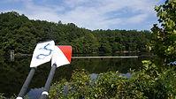 oars on rail.jpg