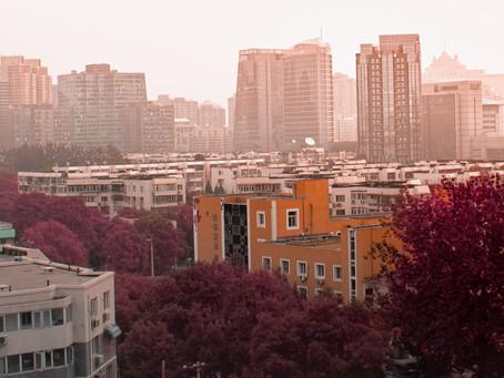 Por que alugar ou vender seu apartamento por uma imobiliária?
