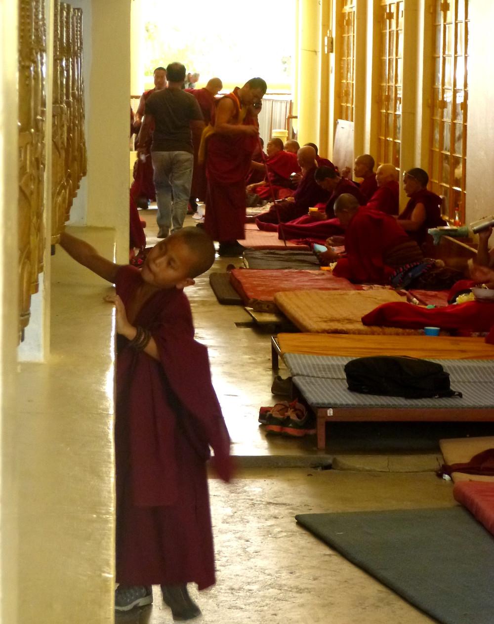 young tibetan monk, dalai lama temple, ahimsa, nonviolence, prayer wheel