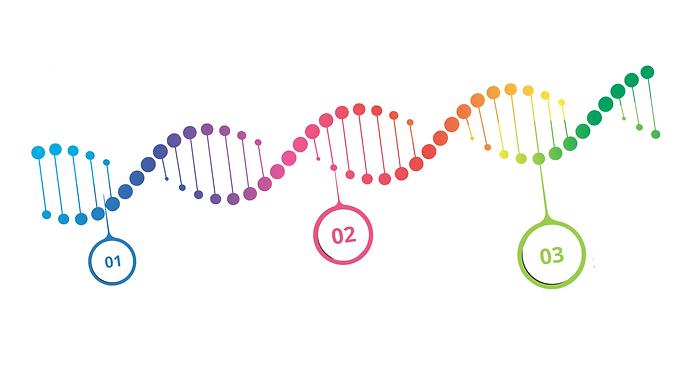 Sicherheitskultur DNA.png
