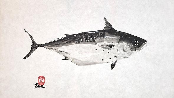 False Albacore Gyotaku