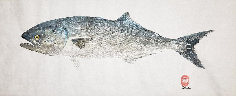 Bluefish Gyotaku