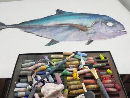 Crusty Old Fish Art