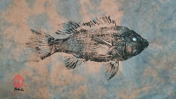 Black Seabass Gyotaku