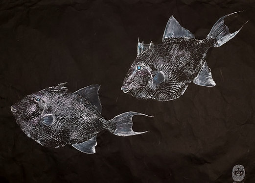 Grey Triggerfish Gyotaku