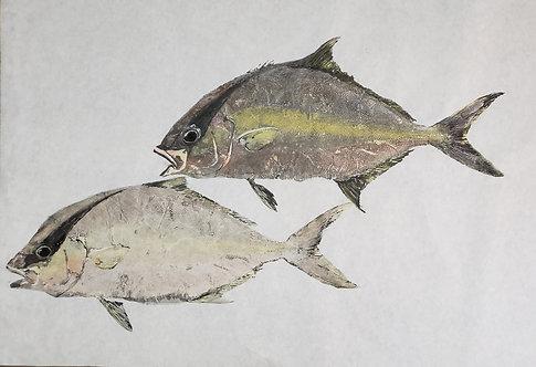 Almaco Jack Gyotaku