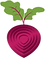 Beetroot LOGO icon only.png