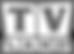 TV_Land_Logo.svg copy.png