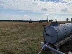 Die zunehmend heißeren Sommer erfordern Maßnahmen - zusätzliche Regenwassertanks zum Tränken