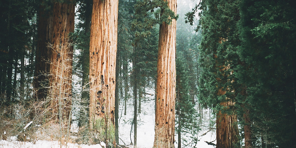 Winter Retreat 2017