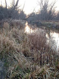 spencer creek trail 05