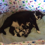Squirt+6 Family Photo 2019-04-22 Day 2.j