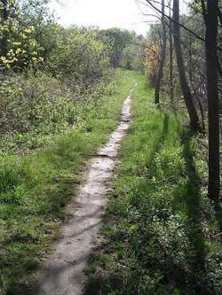 spencer creek trail