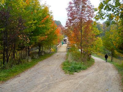 rail trail 02