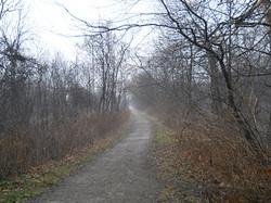 spencer creek trail 03