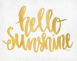 Hello Sunshine by Misty Diller