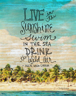 Live In The Sunshine by Misty Diller