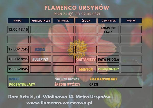 FLAMENCO URSYNÓW (1).jpg