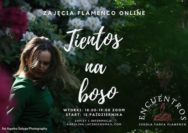 flamenco online (2).jpg