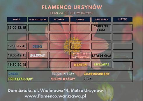 FLAMENCO URSYNÓW (3).jpg
