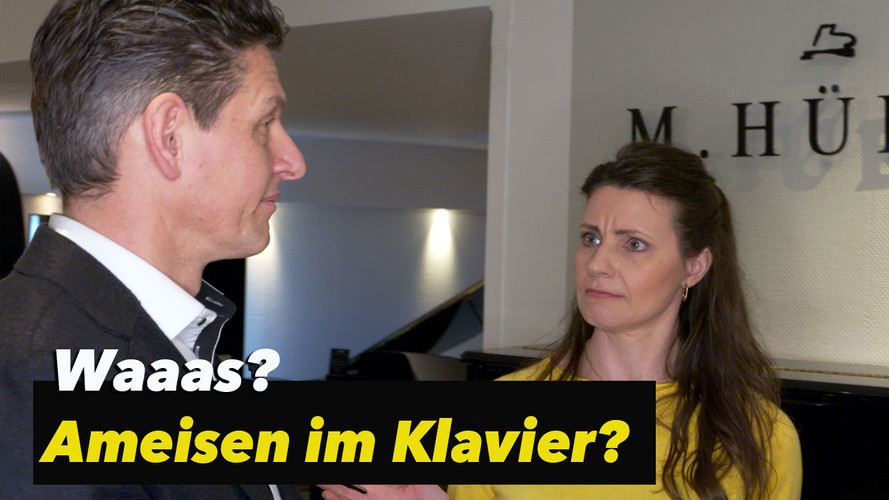 Interview mit Marcus Hübner - Klavierbaumeister aus Trier