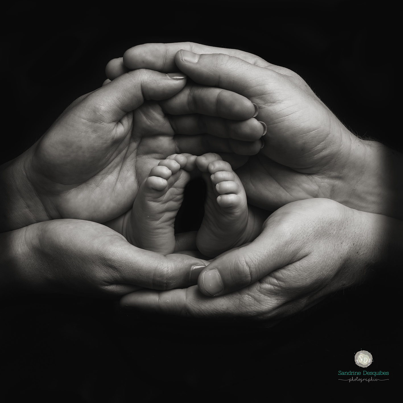 Photographe nouveau né Nouméa