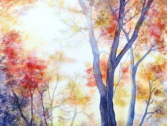 Sous-bois d'automne 22 x 30 cm