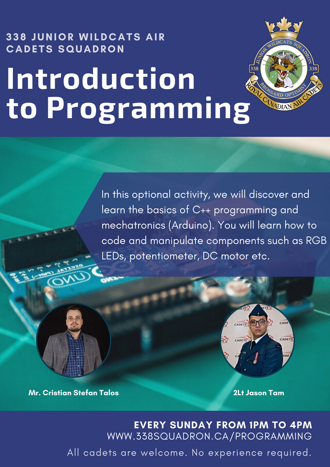 New Optional Activity: Introduction to Programming