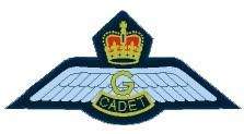 AIR CADET PILOT COURSES SELECTION RESULTS