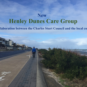 Henley Dunes Care group profile pic.png
