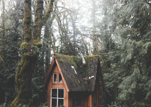 photo-of-wooden-house-in-forest-3363341.