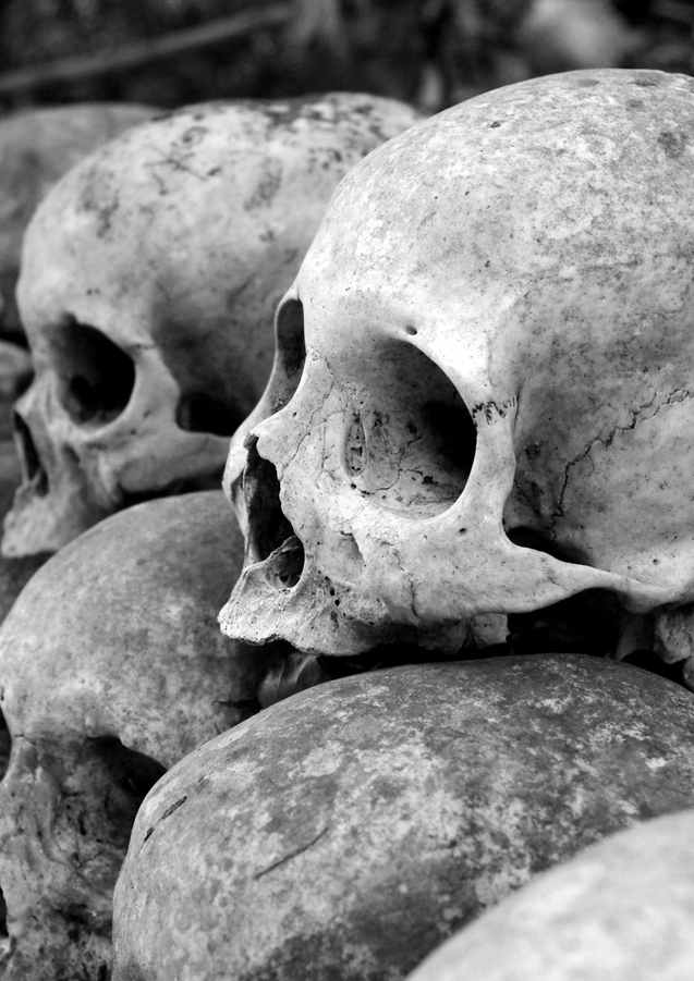 grey-skulls-piled-on-ground-1096925.jpg