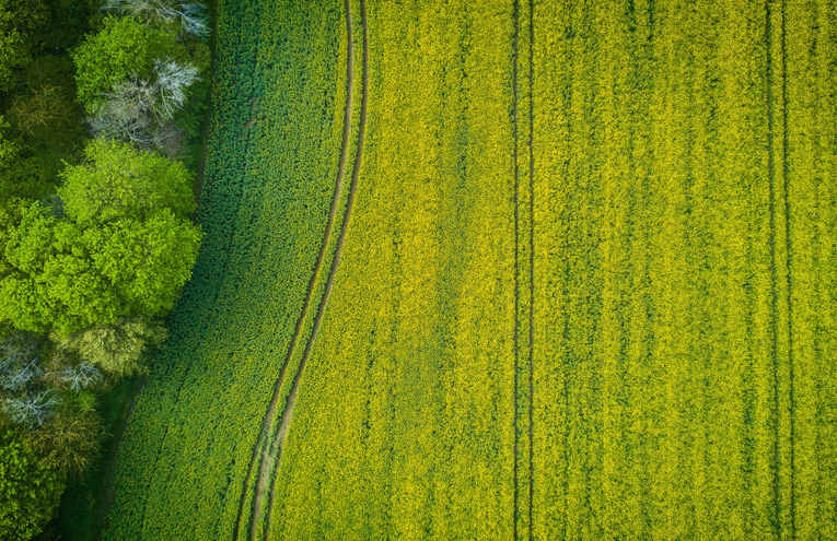 aerial-photography-of-wide-green-grass-f
