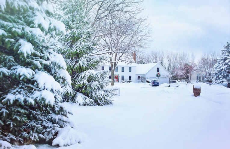 christmas-christmas-house-cold-fir-25958