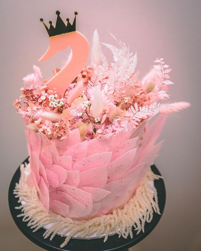 Pretty Pink Princess Swan 🦢 👑 💕  And