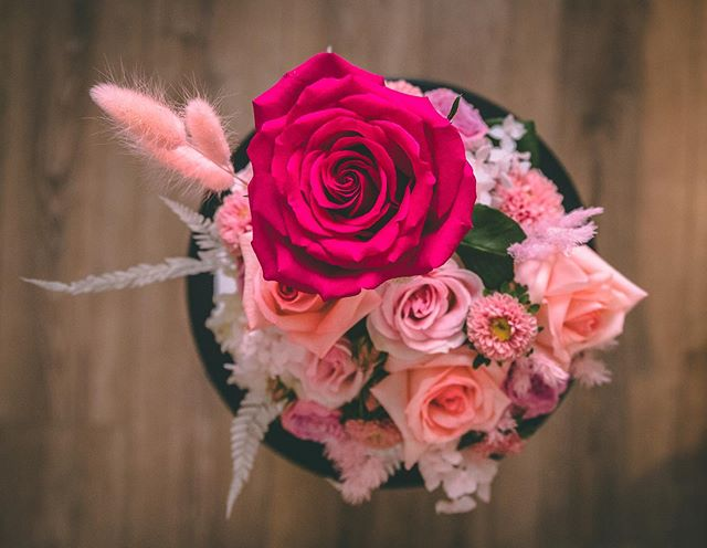 Top View!  How gorgeous is that rose 🥰