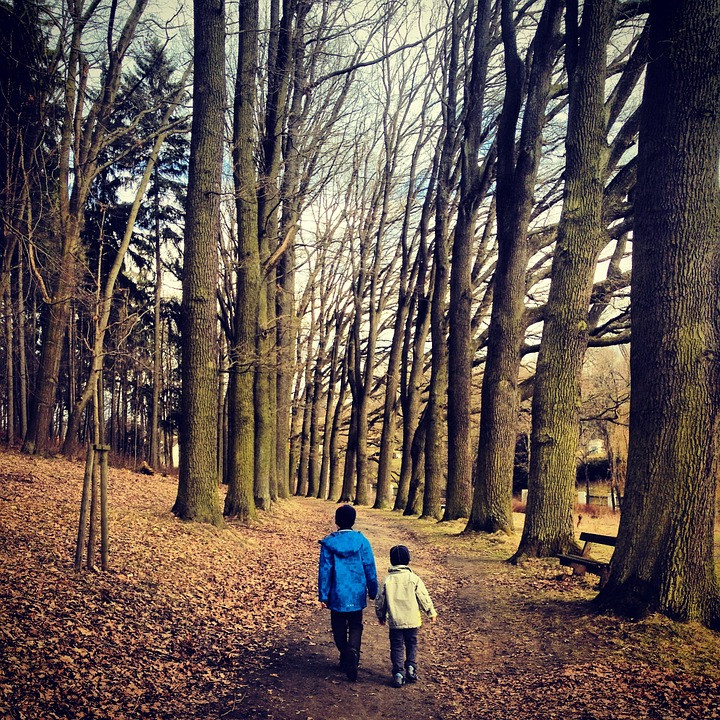 Children in the woods at autumn