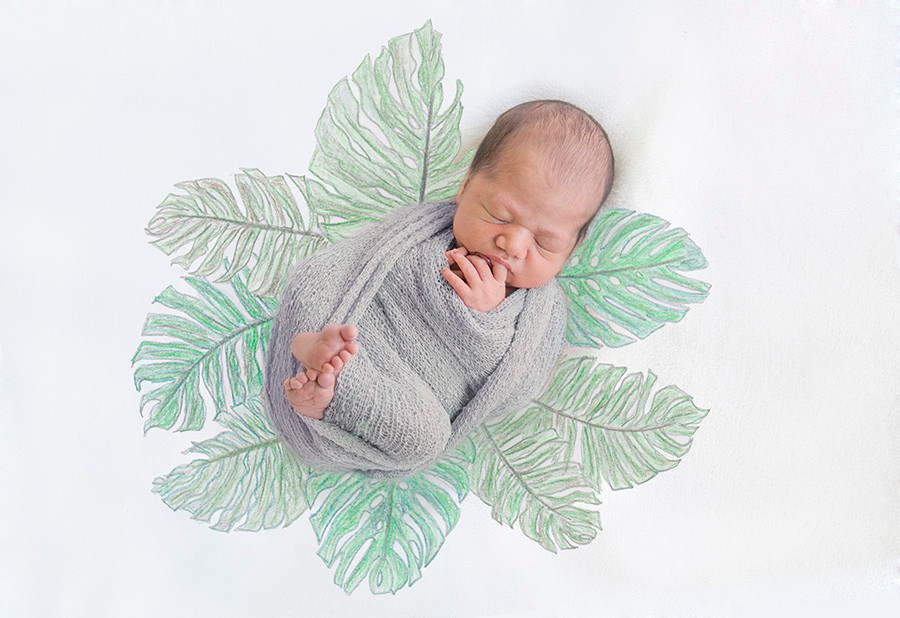 TEST baby tropical leaves.jpg