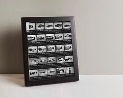 Framed picture- contact print.jpg