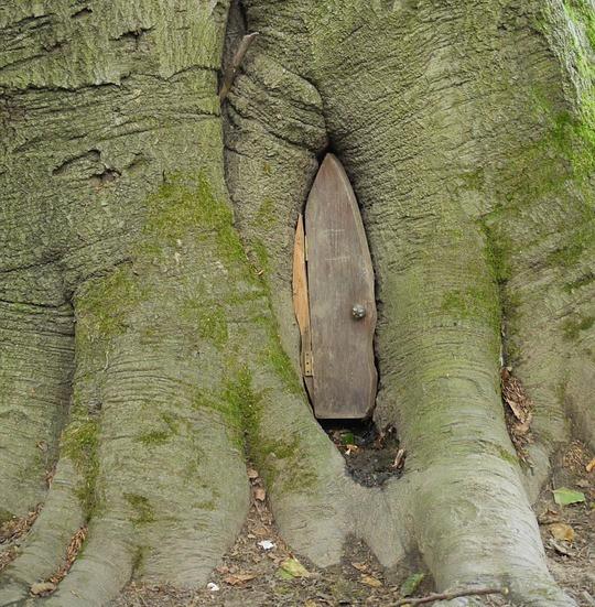 Fairy door in the base of a tree