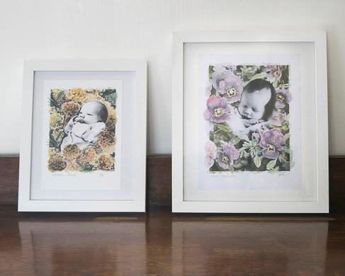 Baby Photo Artwork - Pamela Jane Photogr