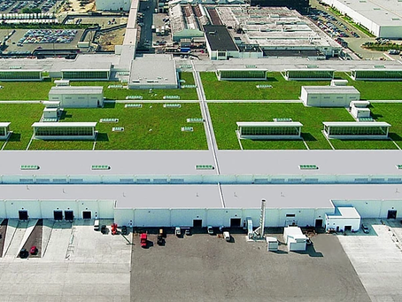 Stát plánuje povinné zelené střechy na nových halách