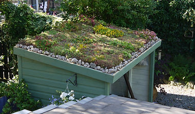 not-a-shed-Green-Roofs-Naturally.jpg