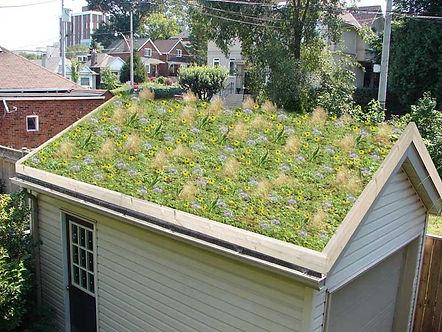 Garage-Design-With-Green-Flower-Garden-P