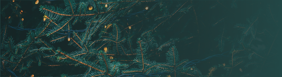 201103 christmas web banner background.p