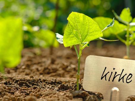Det er tid til at plante