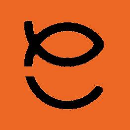 EFD_Ikon_Orange_Kvadrat.png